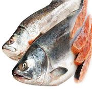 sex drive foods fish